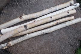 bougeoir bois de bouleau