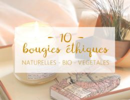 little-idea-bougies-ethique-naturelles-bio-vegetales