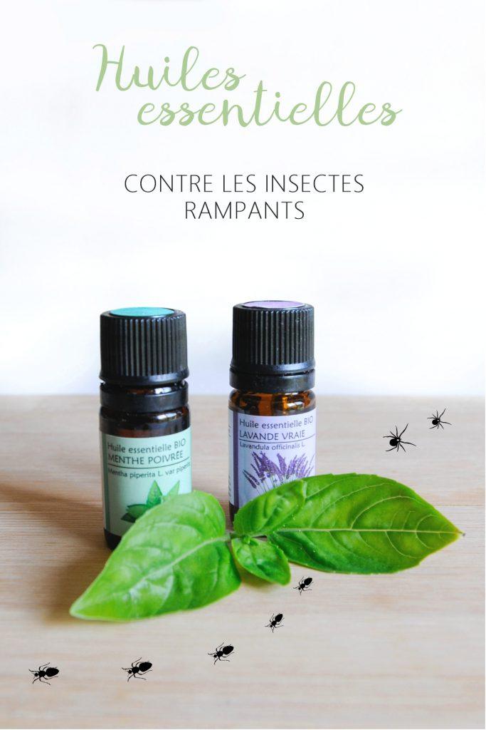 little-idea-huiles-essentielles-contre-insectes-araignee-fourmis-dessin