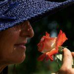 Mon avis sur le parfum First de Van Cleef & Arpels